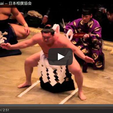 Nihon sumo Kyokai – 日本相撲協会