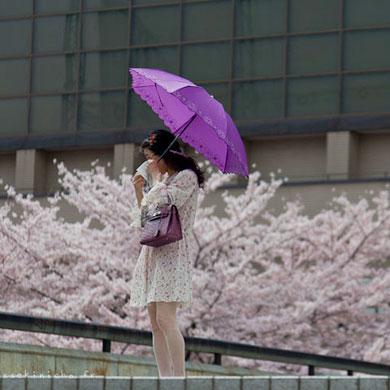 vignette_20_04_2011