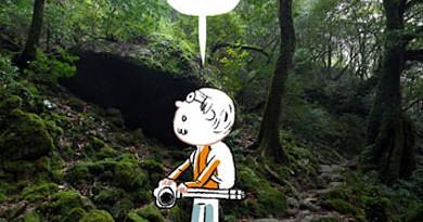 vignette_29_04_2011