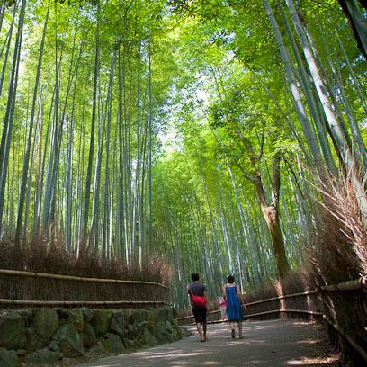 Kyoto • 京都