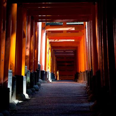 Fushimi inari • 伏見稲荷大社