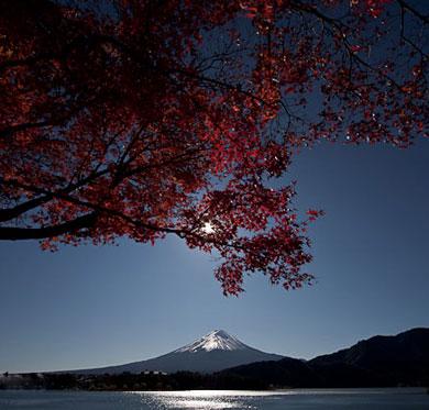 Fin de l'automne à Kawaguchiko
