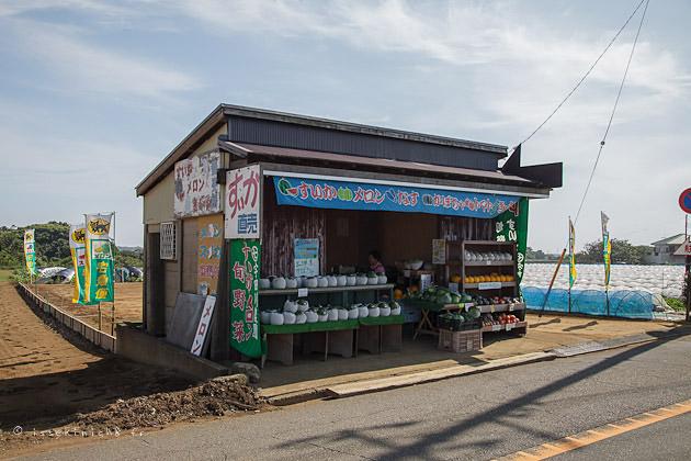 péninsule de Miura, miura peninsula, japon, pastèque, suica
