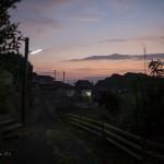 Tashirojima, l'île aux chats : 2/2