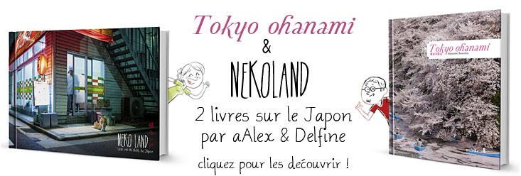, Activités Japon Infos au TGS : «Vivre au Japon»