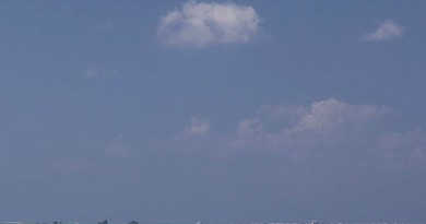 vignette_20_10_2012