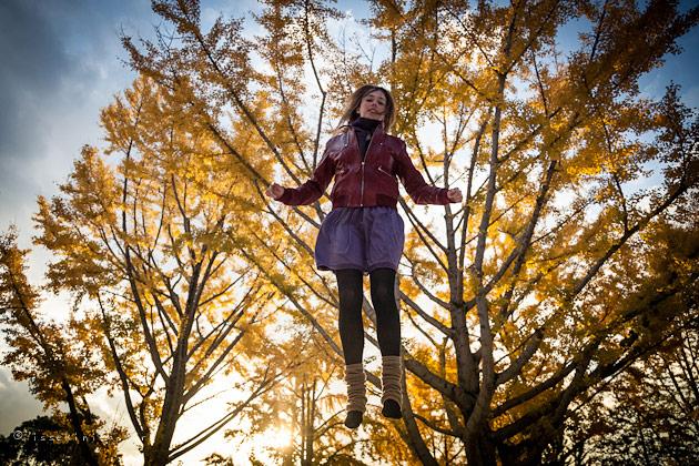 automne, japon, tokyo, koyo, ginko