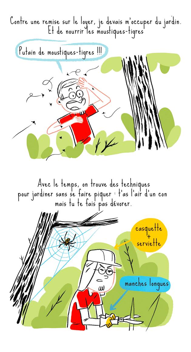 Les moustiques tigres au Japon
