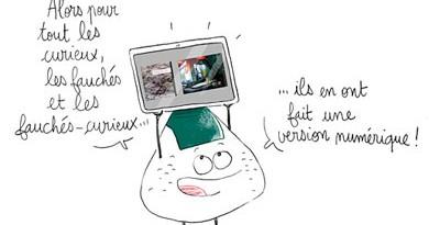vignette_04_02_2013