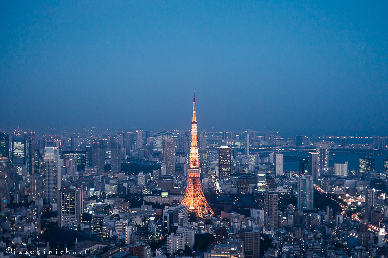 tokyo, roppongi, nuit, night, mori tower, tokyo tower