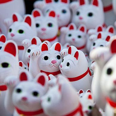 Temple des chats – Gotokuji