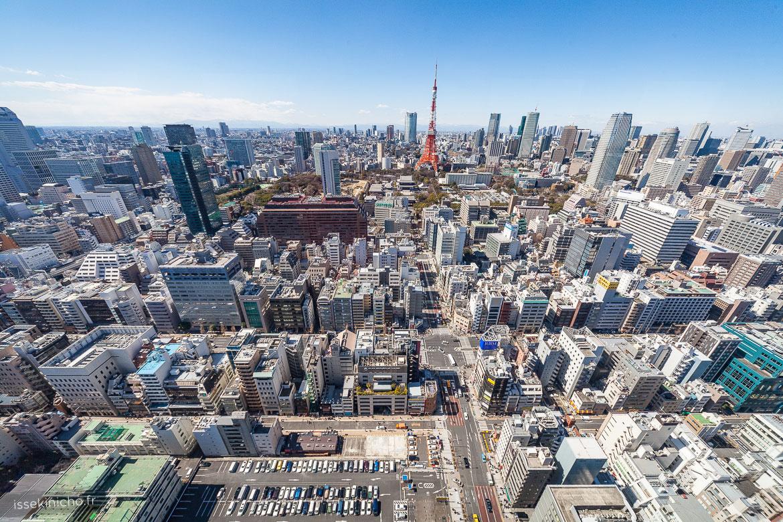 Vue unique sur Tokyo et la tour de Tokyo ultra grand angle