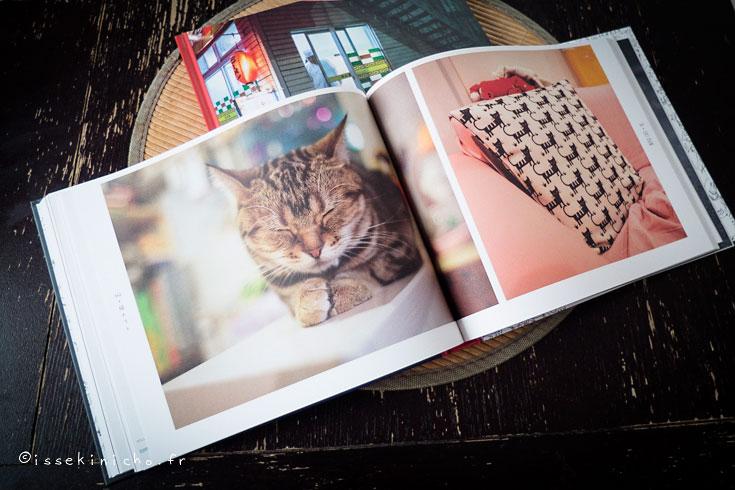 chat, nekoland, chat mignon, japon, tokyo, chat errant, éditions issekinicho, beau livre japon
