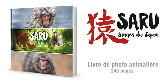 Saru - Singes du Japon, le livre